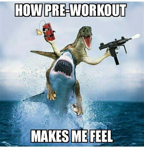 Preworkout Meme - pre workout memes www pixshark com images galleries