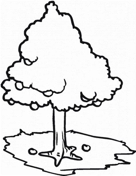 coloring page of a apple tree apple tree coloring page az coloring pages