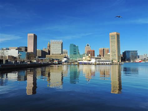 Cityscape Curtains Baltimore Skyline From The Innner Harbor Photograph By
