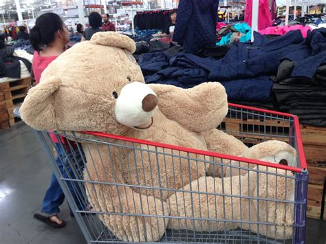 big valentines day bears walmart costco sept 21 015 ohmybuhay flickr