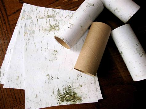 Birch Tree Paper For Crafts - snow bird storytime sturdy for common things