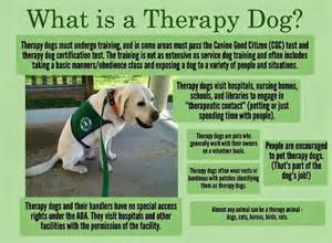 Words That Mean Comfort Therapy Dogs Nanny Dog