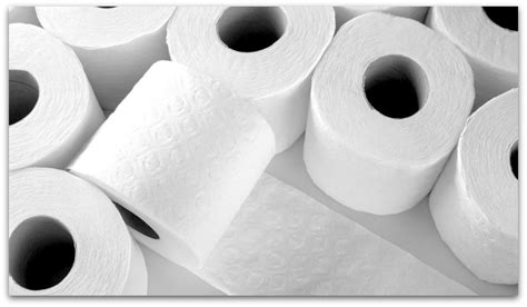 7 great random facts about toilet paper history