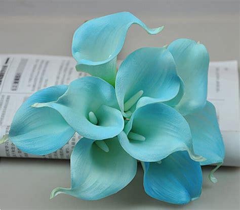 Kalla Blue blue calla bouquet www pixshark