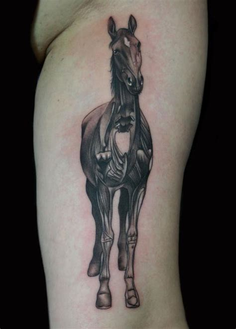 anatomical tattoo anatomical by francisco tattoos
