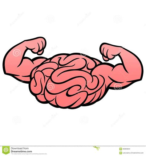 brain clipart brains clipart muscular pencil and in color brains