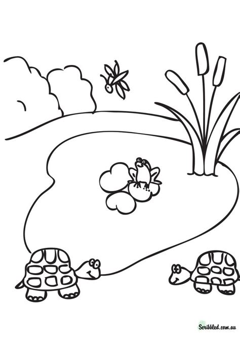 Pond Coloring Page Free Coloring Pages Of Pond Animals