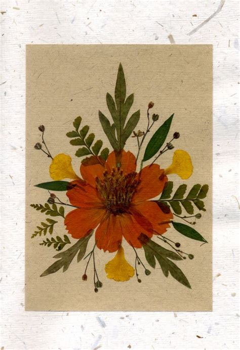 how to make pressed flower cards 1000 images about pressed flowers on flowers