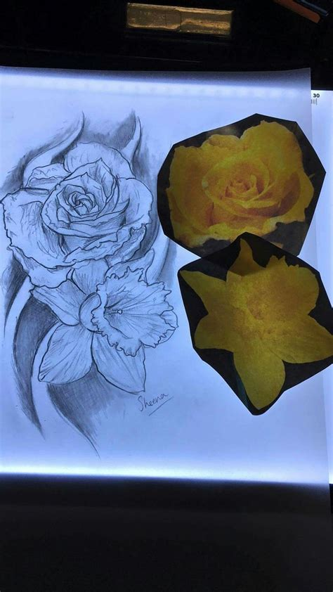 daffodil and rose tattoo best 25 daffodil ideas on narcissus