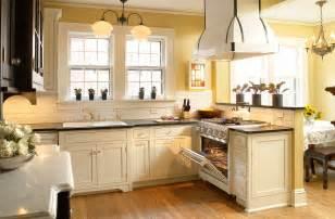 Fancy Kitchen Cabinets Custom Kitchen Cabinets In Black White Chic Plain Fancy