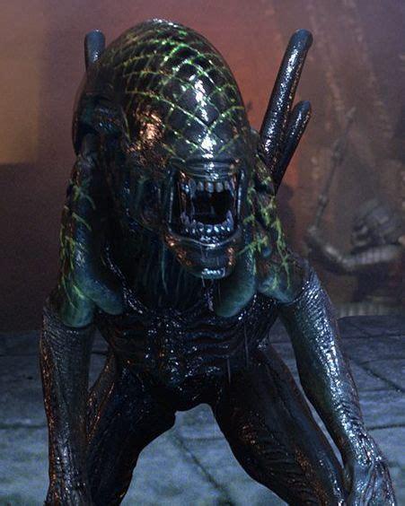 top knot xenopedia the alien vs predator wiki wikia 671 best lv426 and beyond images on pinterest alien