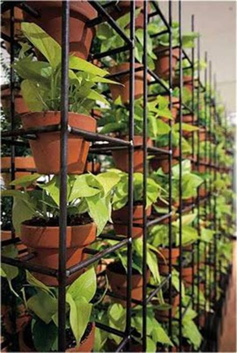 Vertical Garden Mesh 12 Best Images About Rethink Reinforcing On