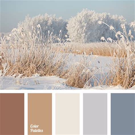 colors that match with brown 25 best ideas about winter color palettes on