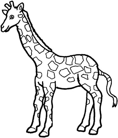 Simple Giraffe Outline Print Out And Color Pictures Of A Variety Of Animals Applique Giraffe Templates To Print