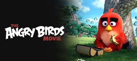 the angry birds movie dvd release date august 16 2016 new on dvd in august netflix dvd blog