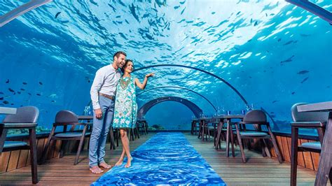 Kitchens With An Island by 5 8 Undersea Restaurant Maldives Underwater Restaurant