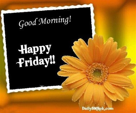 imagenes de good morning happy friday good morning happy friday pictures photos and images for