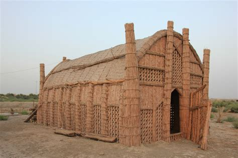 house reed a mudhif a traditional reed house made by the madan marsh arabs people in the