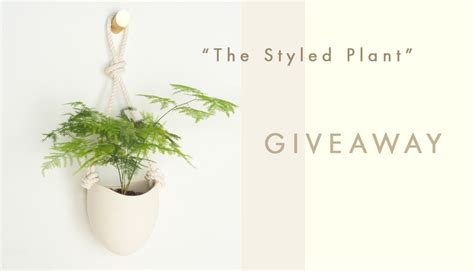 Plant Giveaways - home styled canvas