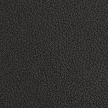 Charcoal Leather by Mammut Charcoal Burch Fabrics