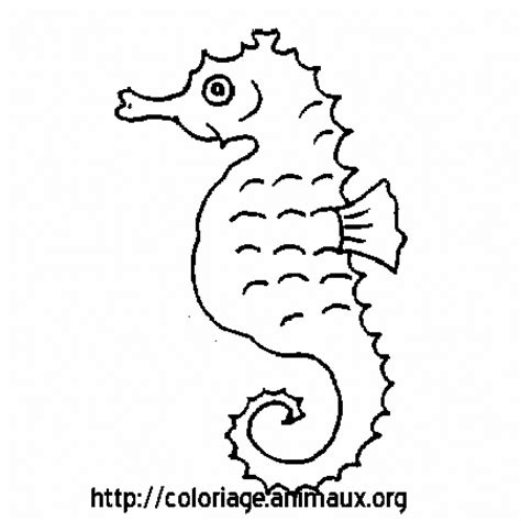 hippocampe coloriage dessin pictures to pin on pinterest
