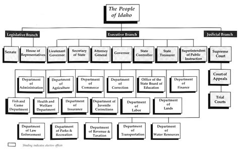 branches of science flowchart branches of science flowchart create a flowchart