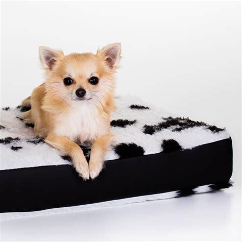 interno per cuscini cuscini per cani 101