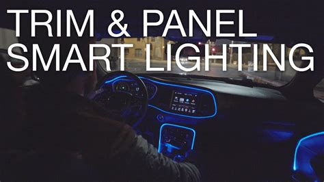 Car Trim Types by Type S Panel Trim Lights