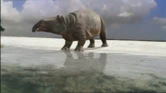 Moeritherium walking with trilogy wiki