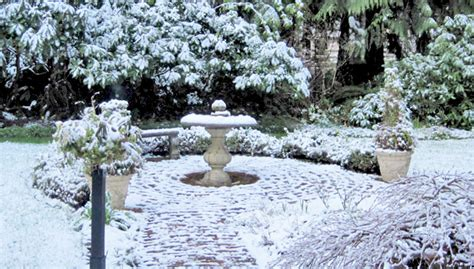 winter garden ideas northwest gardening winter garden ideas