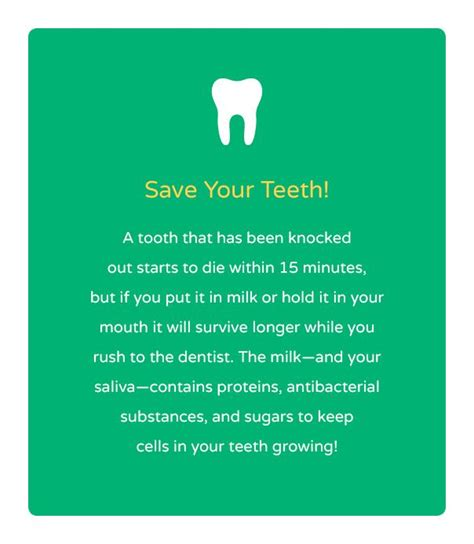 the 25 best dental facts ideas on dental dentistry and dental assistant