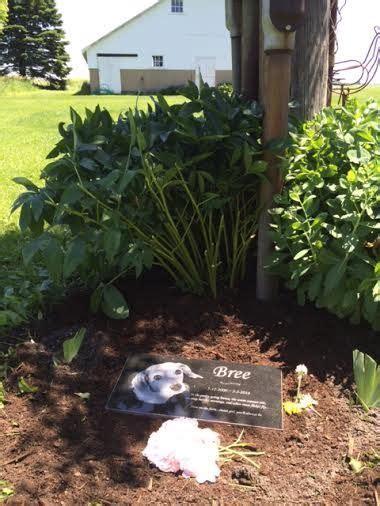 pet burial in backyard 126 best pet memorials pet burials images on pinterest