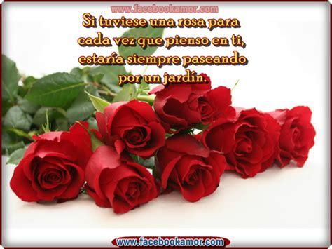 imagenes de rosas rojas para facebook flores de rosas rojas de amor im 225 genes bonitas para