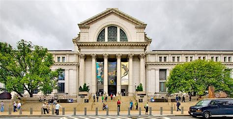 amsterdam museum of natural history the 18 most breathtaking museums around the world prepare