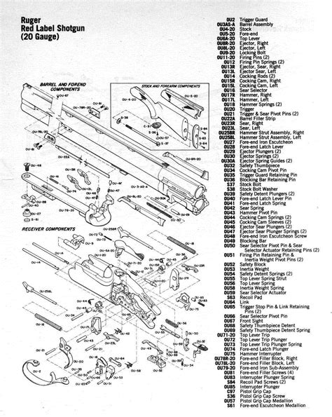 mini 14 parts diagram schematic for model 100 winchester get free image about