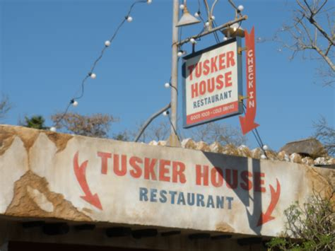 tusker house disney tusker house disney food allergy guest review animal kingdom allergy free mouse