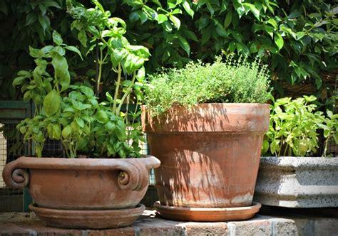 Windowsill Herb Garden Containers by Kitchen Herb Garden Ideas You Ll