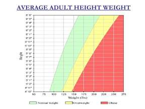 average height average adult height weight