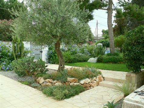 piante da mettere in giardino vivai mello alessandro realizzazioni giardini