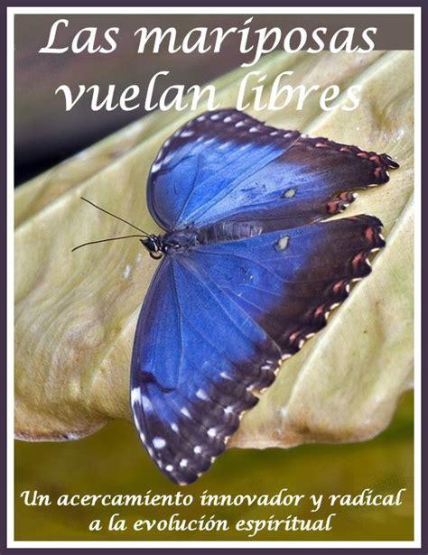 imagenes de mariposas que vuelan las mariposas vuelan libres