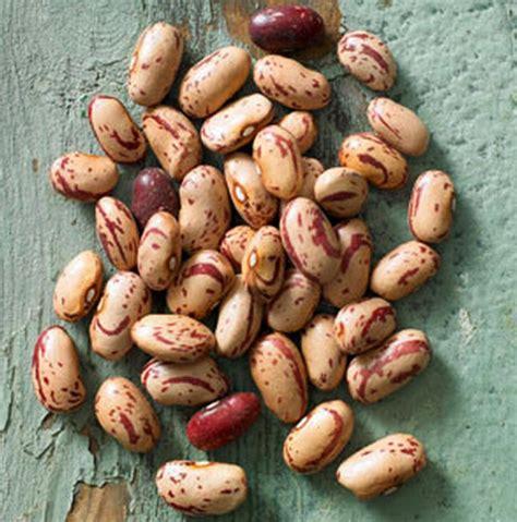 cucinare fagioli borlotti quattro legumi per quattro ricette veg le proteine in cucina