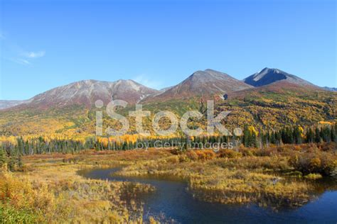 alaska colors alaska fall colors stock photos freeimages
