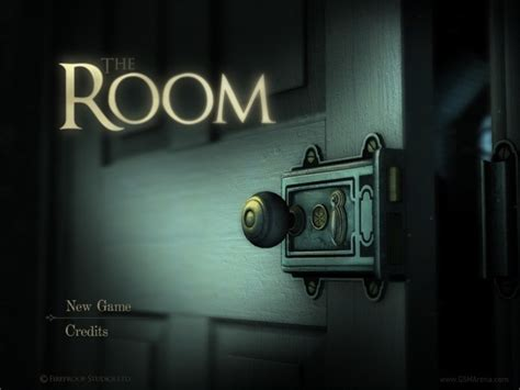 the room puzzle the room for review