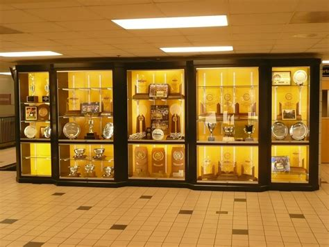 trophy display cabinets with glass doors trophy display cabinets with glass doors divine modern