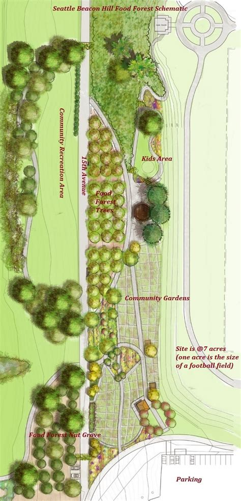 seattle creating a massive food forest with free edible veggies and fruits the gaia health blog