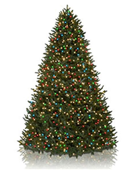 white christmas tree with colored lights happy holidays