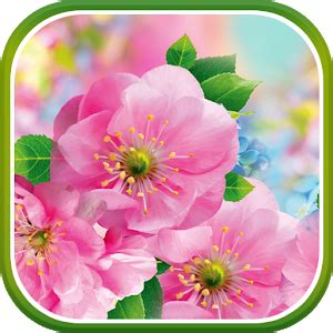 Android Flower Live Wallpaper Mobile9 by Flowers Live Wallpaper Play