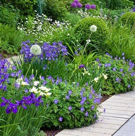witte border bloemen border met witte en paarse planten border tuin planten