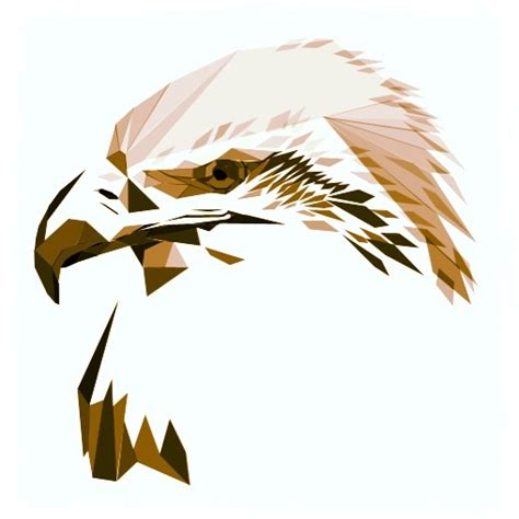 eagle tattoo reference 17 best images about geometric animals american indians