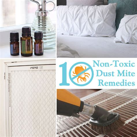 mites treatment home remedy 10 non toxic dust mite remedies for your home pretty handy